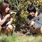 【エロ画像20枚】パンチラ、しゃがみパンチラ、パンチラ | 2021-06-05 2:12更新
